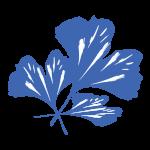 ginko-leaf-blue