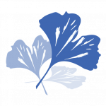 cropped-Ginko-Leaf-Blue.png