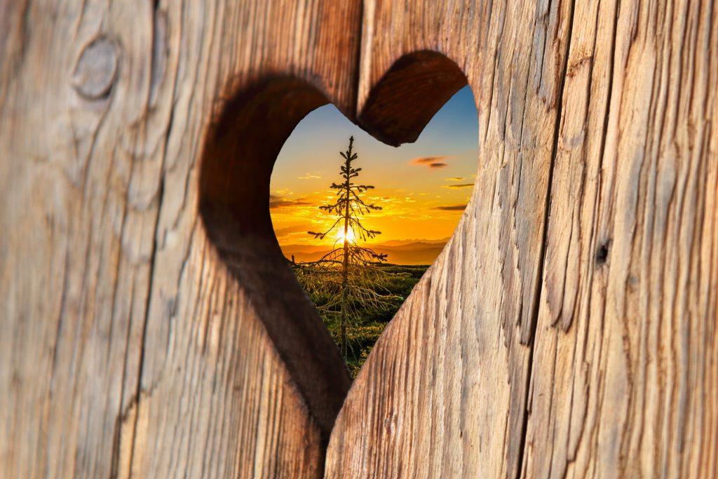 heart-cutout